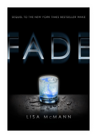fade lisa mcmann guide review