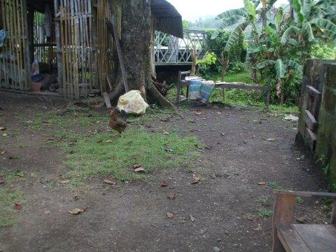 Leonora's childhood home