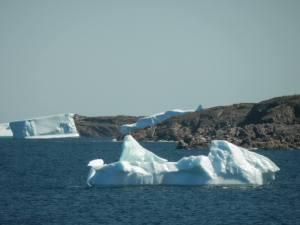 Icebergs2