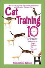 CatTraining10Minutes