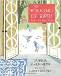 IridescenceBirds